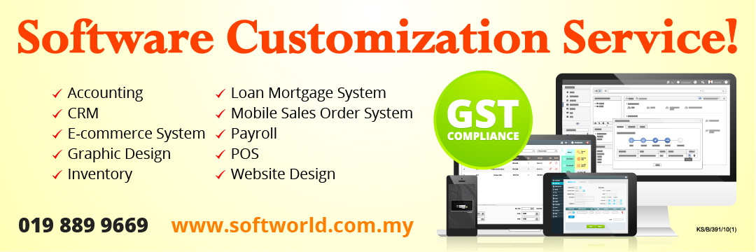 Software Customization Service